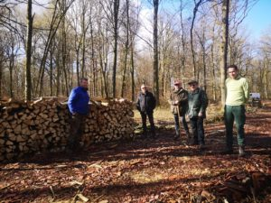 En forêt, la commission sur le terrain.
